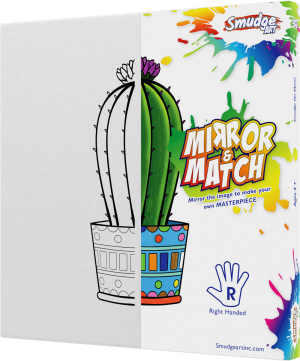 mirror and match cactus